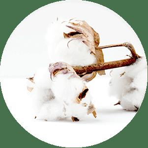 Cotton-circle