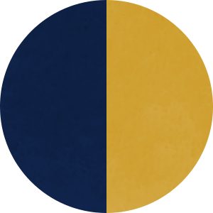Night Sky and Mustard Seed